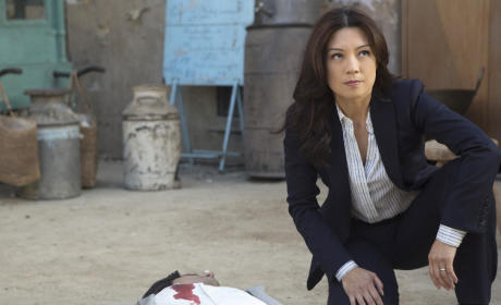 Agent May in Bahrain - Agents of S.H.I.E.L.D. Season 2 Episode 17