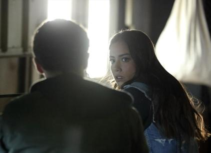 Watch Agents of S.H.I.E.L.D. Season 1 Episode 13 Online