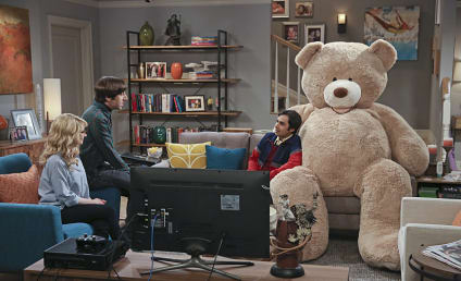 The Big Bang Theory Season 9 Episode 20 Review: The Big Bear Precipitation