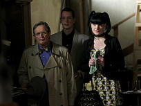 NCIS Season 9 Episode 14