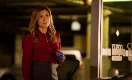 Rizzoli & Isles Q&A: Sasha Alexander on Creepy Clowns and Complicated Relationships