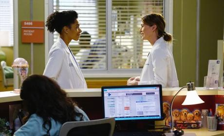 Smiling Sisters - Grey's Anatomy Season 11 Episode 12