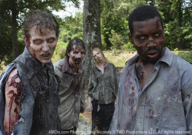 The Walking Dead Zombies