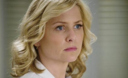 Grey's Anatomy Spoilers: Raising Arizona