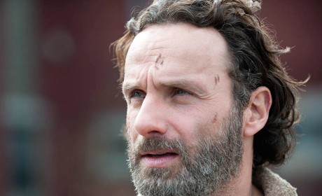 How would you grade The Walking Dead Season 4 finale?