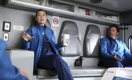 Grey's Anatomy Season 12 Episode 17 Review: I Wear the Face