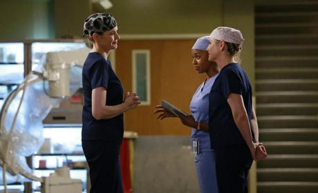 Dr. Herman and Her Underlings - Grey's Anatomy Season 11 Episode 8