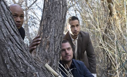 NCIS Los Angeles Season 6 Episode 15 Review: Forest For the Trees