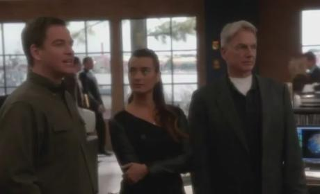 NCIS 'Hereafter' Clip - Here to Work