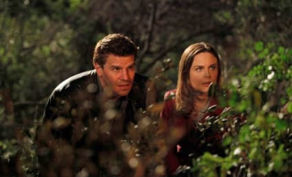 Coming to Bones: A Serious Love Interest for Booth