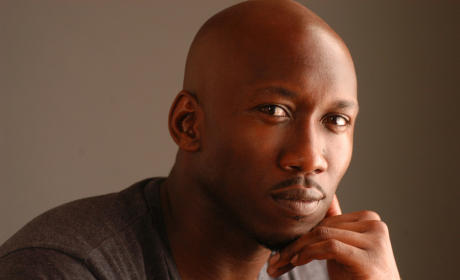 Marvel's Luke Cage Casts Mahershala Ali in Key Role
