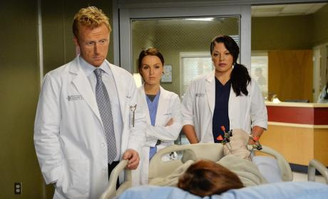 A Tough Patient - Grey's Anatomy Season 11 Episode 6