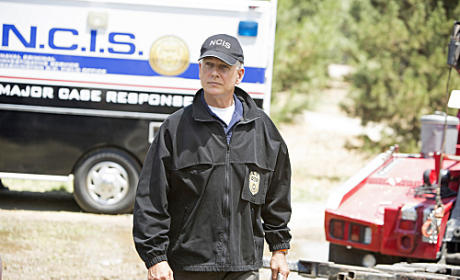 Special Agent L.J. Gibbs