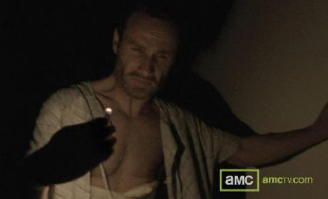 From The Walking Dead