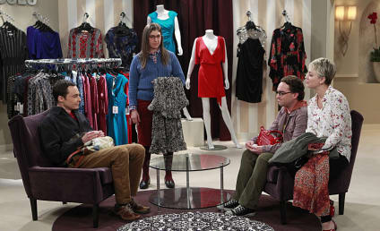 The Big Bang Theory Season 8 Episode 12 Review: The Space Probe Disintegration
