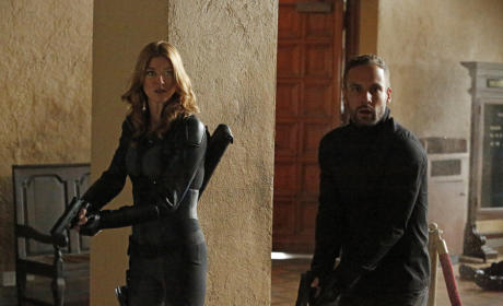 Agents of S.H.I.E.L.D Spinoff to Star Adrianne Palicki and Nick Blood?
