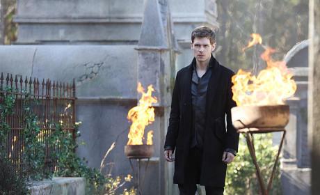 Klaus on Fire - The Originals