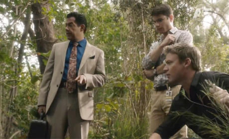 The Glades Review: Eating Away at My Brains