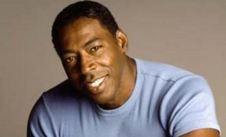 Ernie Hudson Snags Recurring Role on Heroes