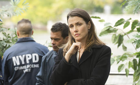 Taking Over a Case - Blue Bloods