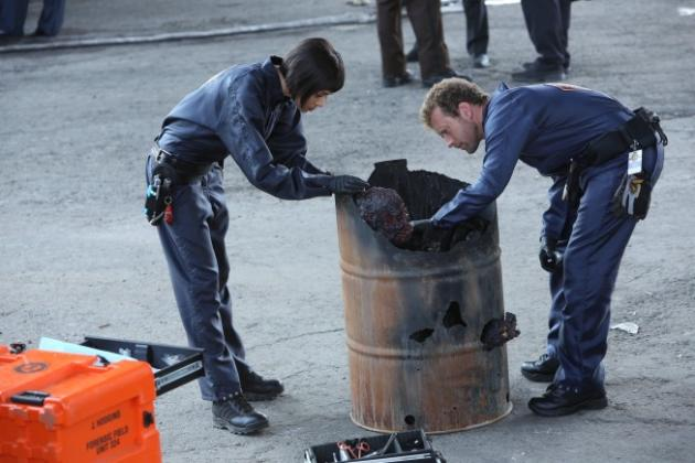 Hodgins and Cam