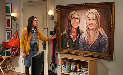 The Big Bang Theory Review: A Painting and Basketball