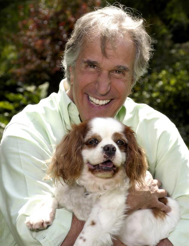 Henry Winkler Picture