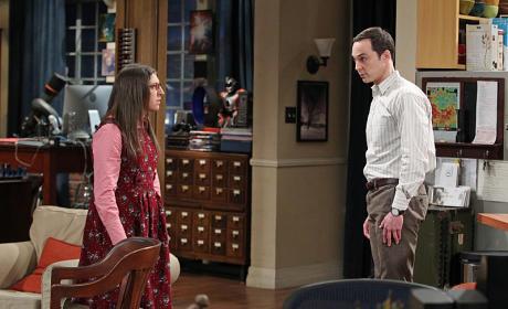 Amy and Sheldon - The Big Bang Theory Season 8 Episode 24