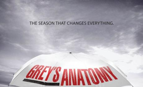 The Grey's Anatomy Season That Changes Everything