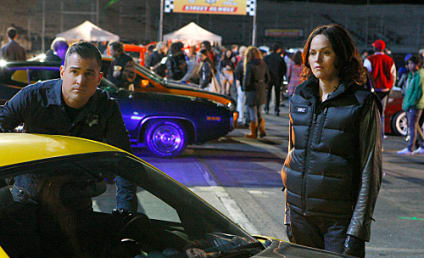 Jorja Fox Signs New CSI Contract