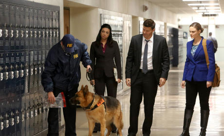 Booth and Brennan Bring in an FBI Dog - Bones Season 10 Episode 12