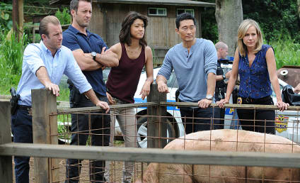 Hawaii Five-0 Season 6 Episode 9 Review: Charade
