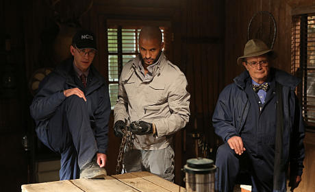 NCIS Review: 101 Uses for a Dead Mole