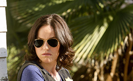 Jorja Fox Promoted (Again) to Series Regular on CSI