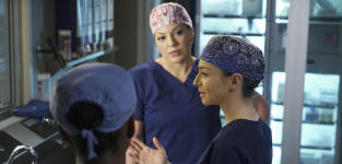 Stephanie Arrives - Grey's Anatomy Season 11 Episode 24