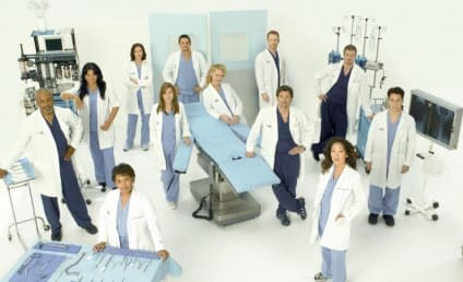 Grey's Anatomy Cast: Season Five Photo