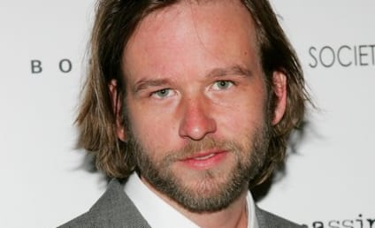 Dallas Roberts to Recur as Alicia's Brother on The Good Wife
