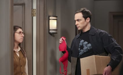 The Big Bang Theory Producer Teases Sheldon Sex Shocker