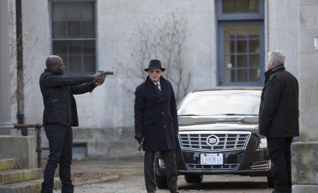 The Blacklist Season 2 Episode 9 Review: Luther Braxton