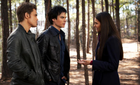 TVD Love Triangle