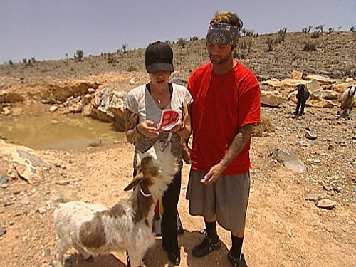 A Goat Eats Nick and Vicki's Clue