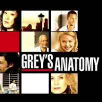 Greys-anatomy-1-fan
