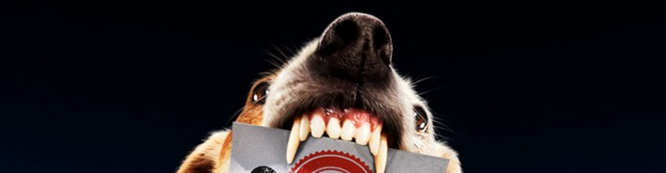 Terriers logo