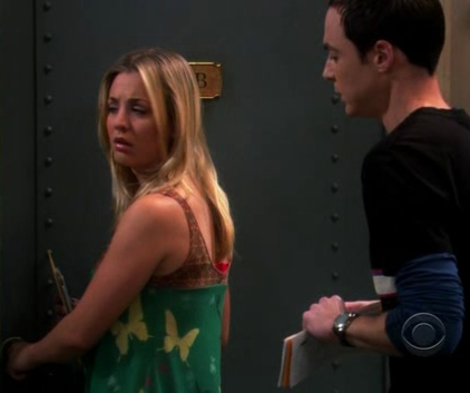 Watch The Big Bang Theory Season 2 Episode 9