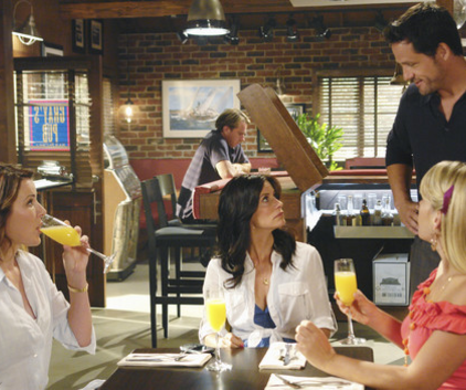 Watch Cougar Town Season 1 Episode 3