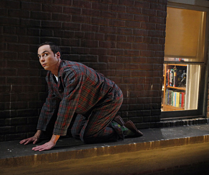Watch The Big Bang Theory Season 3 Episode 13