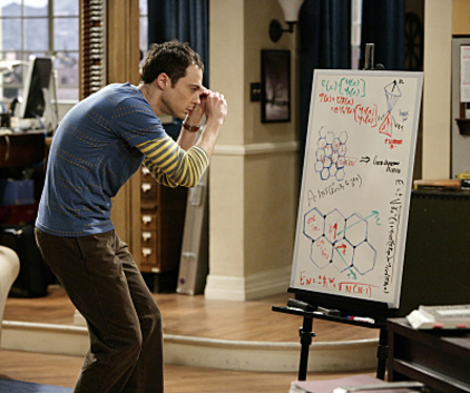 Watch The Big Bang Theory Season 3 Episode 14