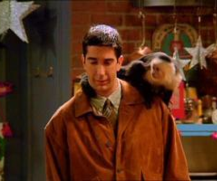 Watch Friends Season 1 Episode 10