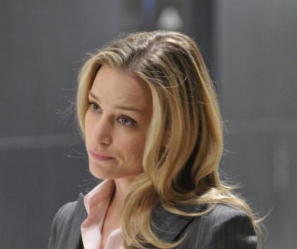 Watch Covert Affairs Season 1 Episode 1
