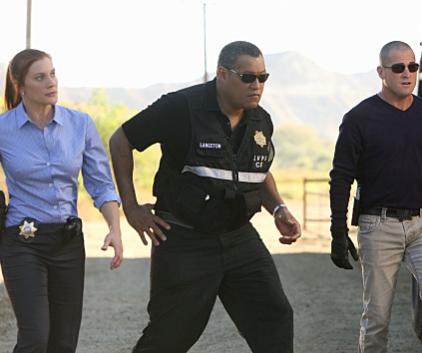 Watch CSI Season 11 Episode 8